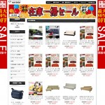 中国詐欺団の偽サイトの潰し方