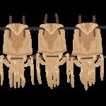 アホノミクス。3本の矢の3本目で国民はメザシになりました。
